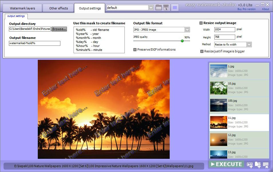 Easy Watermark Studio Pro 3.5 Crack and Serial key Free Download